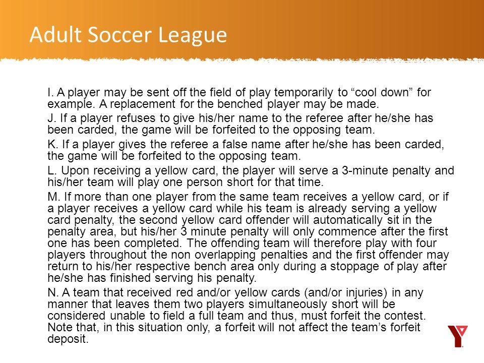 Adult Soccer League