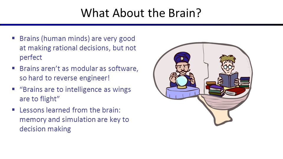 What About the Brain Brains (human minds) are very good at making rational decisions, but not perfect.