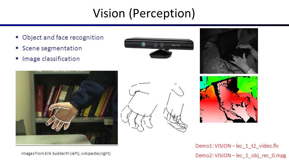 Vision (Perception) Object and face recognition Scene segmentation