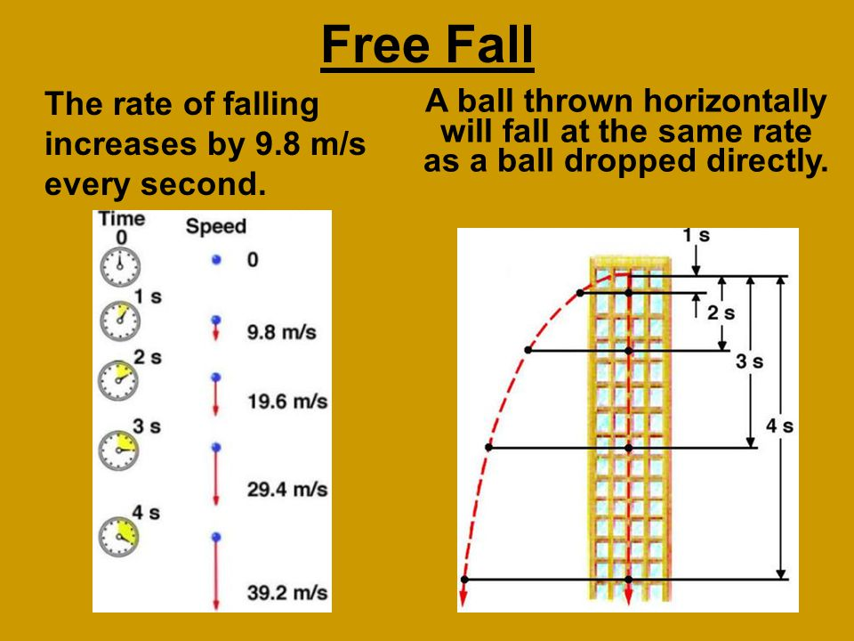Free Fall The rate of falling increases by 9.8 m/s every second.