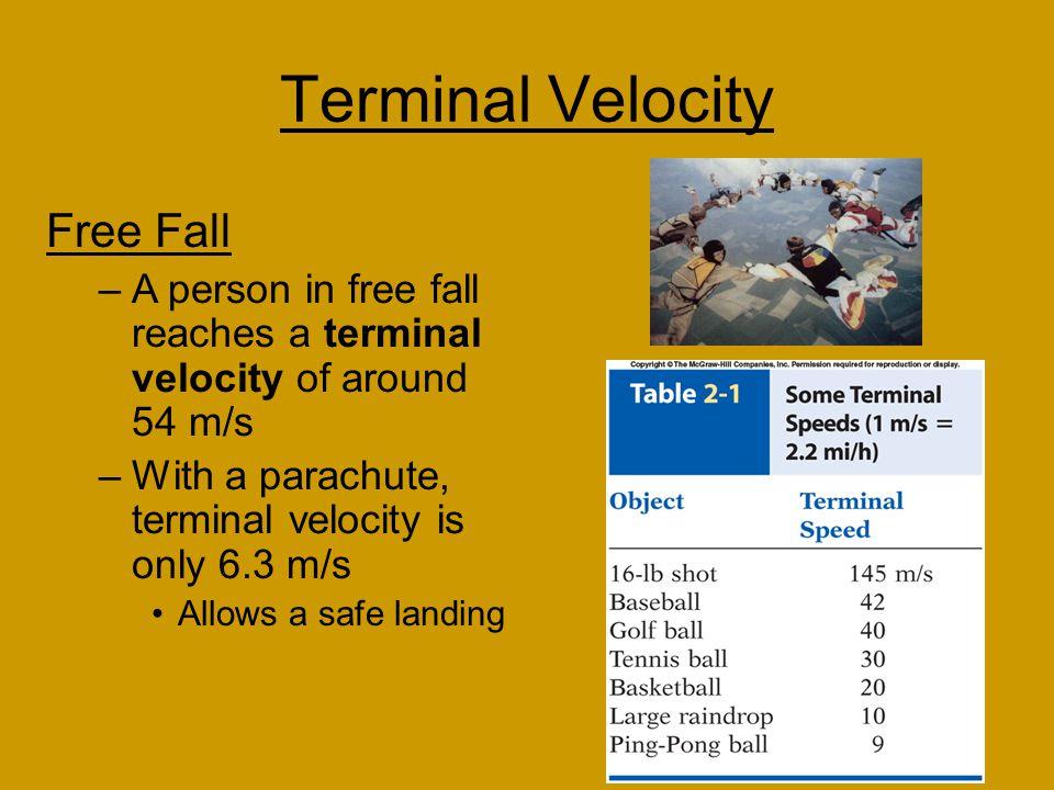 Terminal Velocity Free Fall