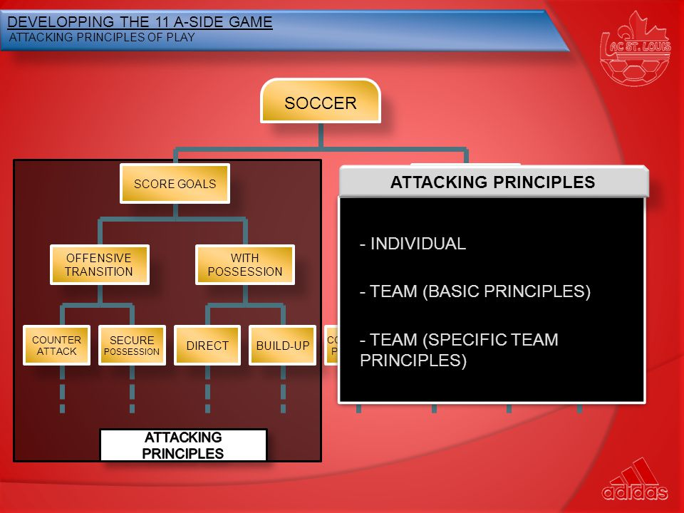 - TEAM (BASIC PRINCIPLES)