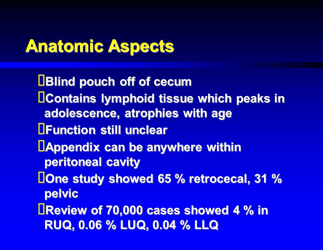 Anatomic Aspects Blind pouch off of cecum