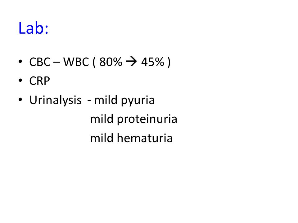 Lab: CBC – WBC ( 80%  45% ) CRP Urinalysis - mild pyuria