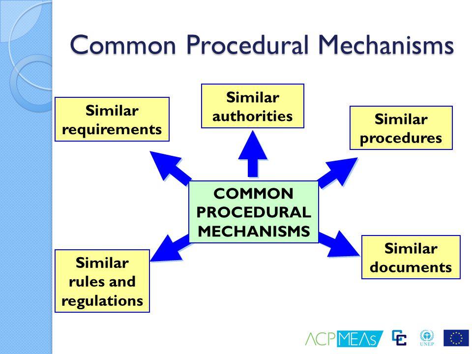 Common Procedural Mechanisms