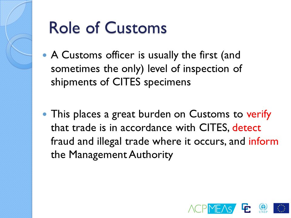 Role of Customs A Customs officer is usually the first (and sometimes the only) level of inspection of shipments of CITES specimens.