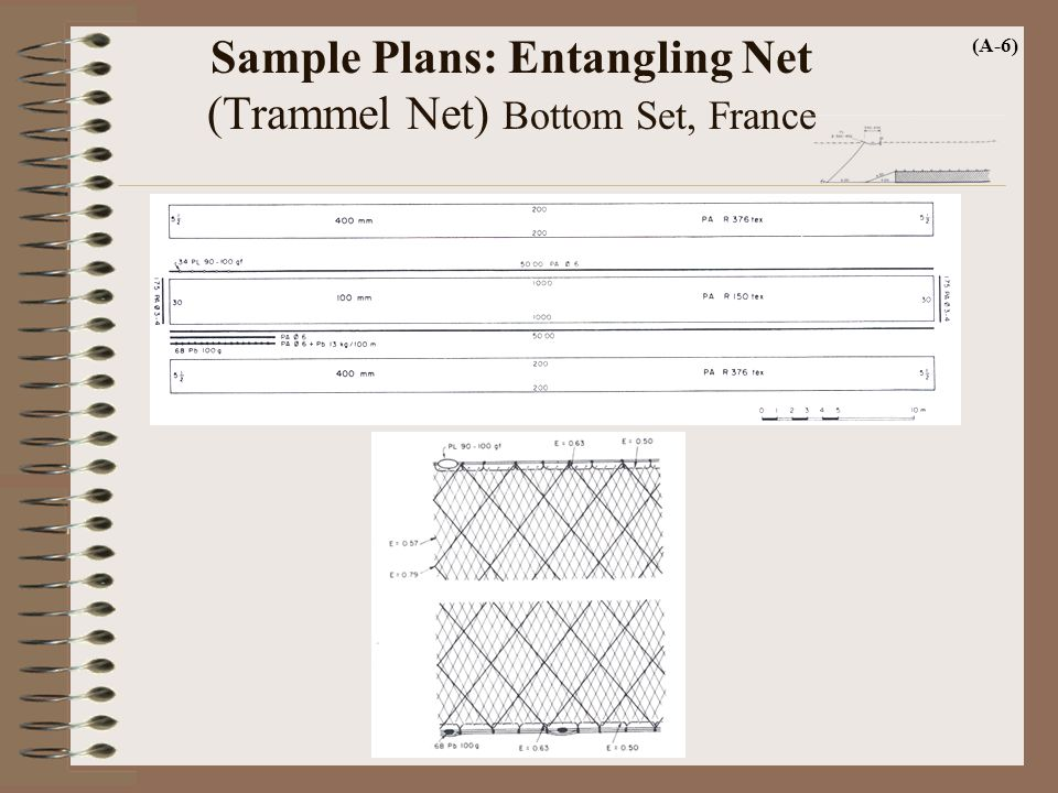 Sample Plans: Entangling Net (Trammel Net) Bottom Set, France