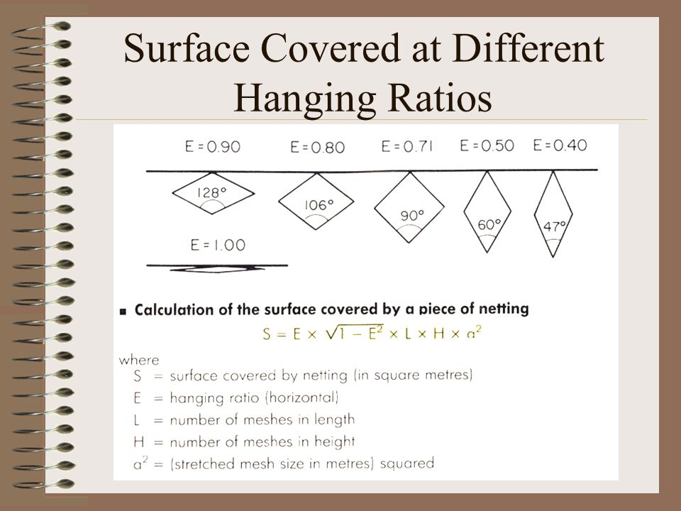 Surface Covered at Different Hanging Ratios