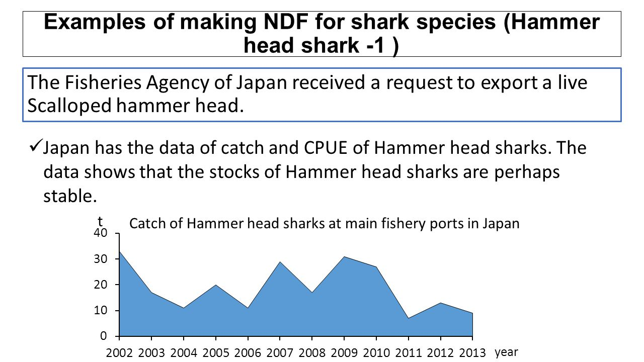 Examples of making NDF for shark species (Hammer head shark -1 )
