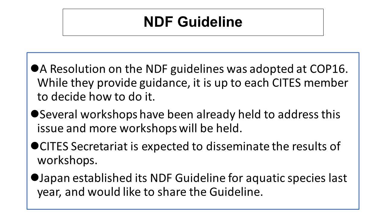 NDF Guideline