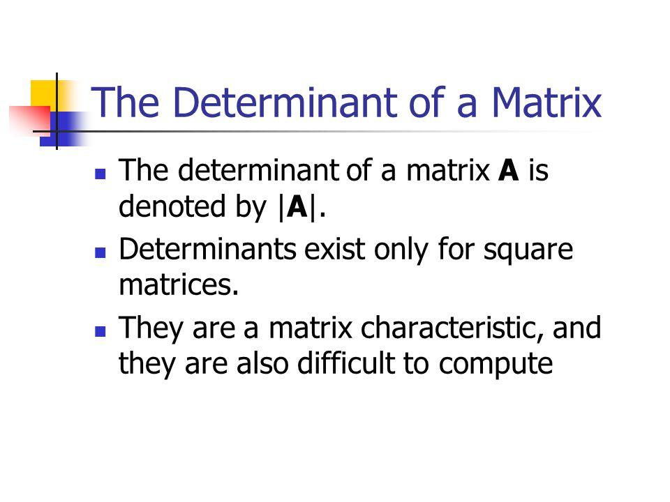 The Determinant of a Matrix
