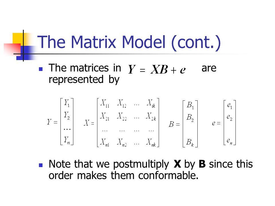 The Matrix Model (cont.)