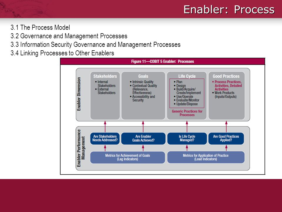 Enabler: Process 3.1 The Process Model