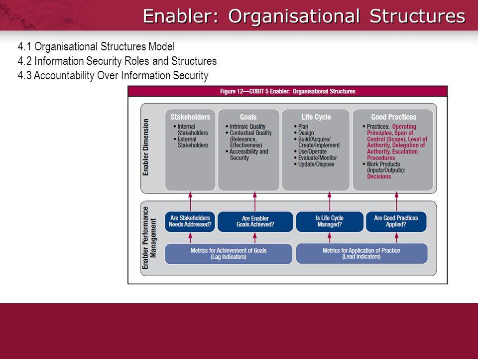 Enabler: Organisational Structures