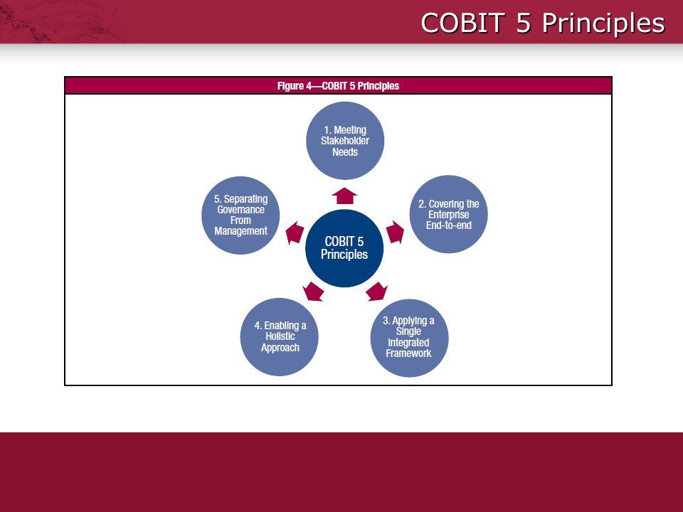 COBIT 5 Principles