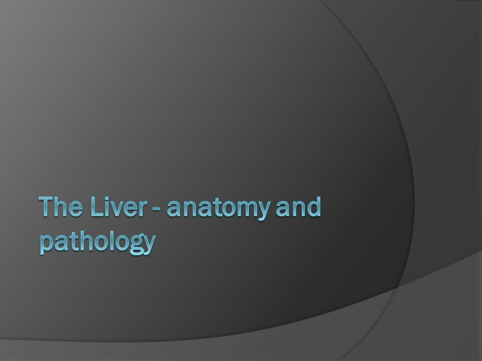 The Liver - anatomy and pathology