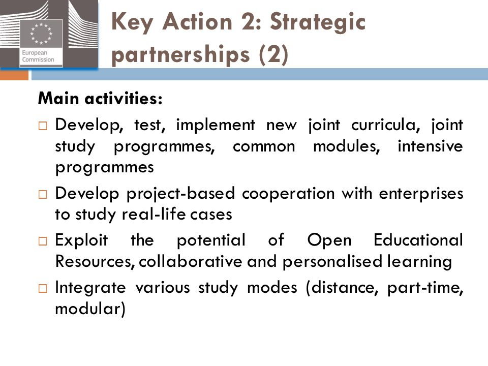 Key Action 2: Strategic partnerships (2)