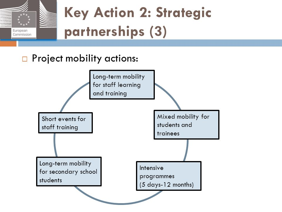 Key Action 2: Strategic partnerships (3)