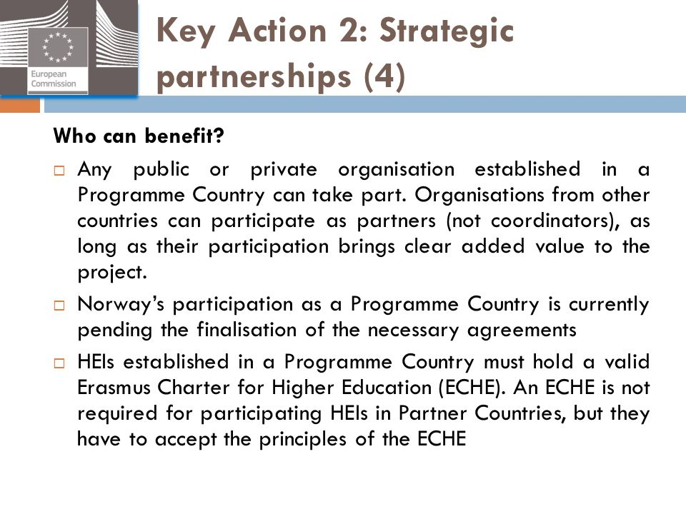 Key Action 2: Strategic partnerships (4)