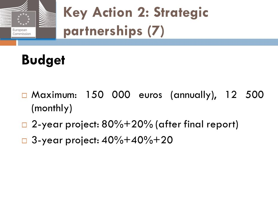 Key Action 2: Strategic partnerships (7)