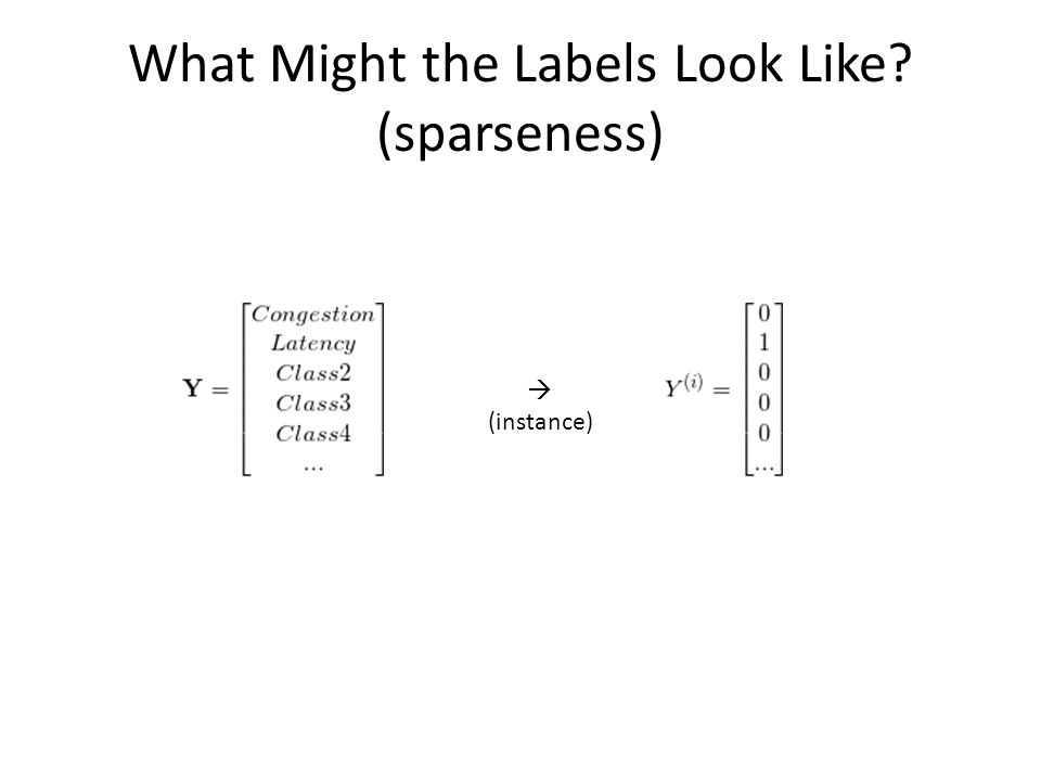 What Might the Labels Look Like (sparseness)