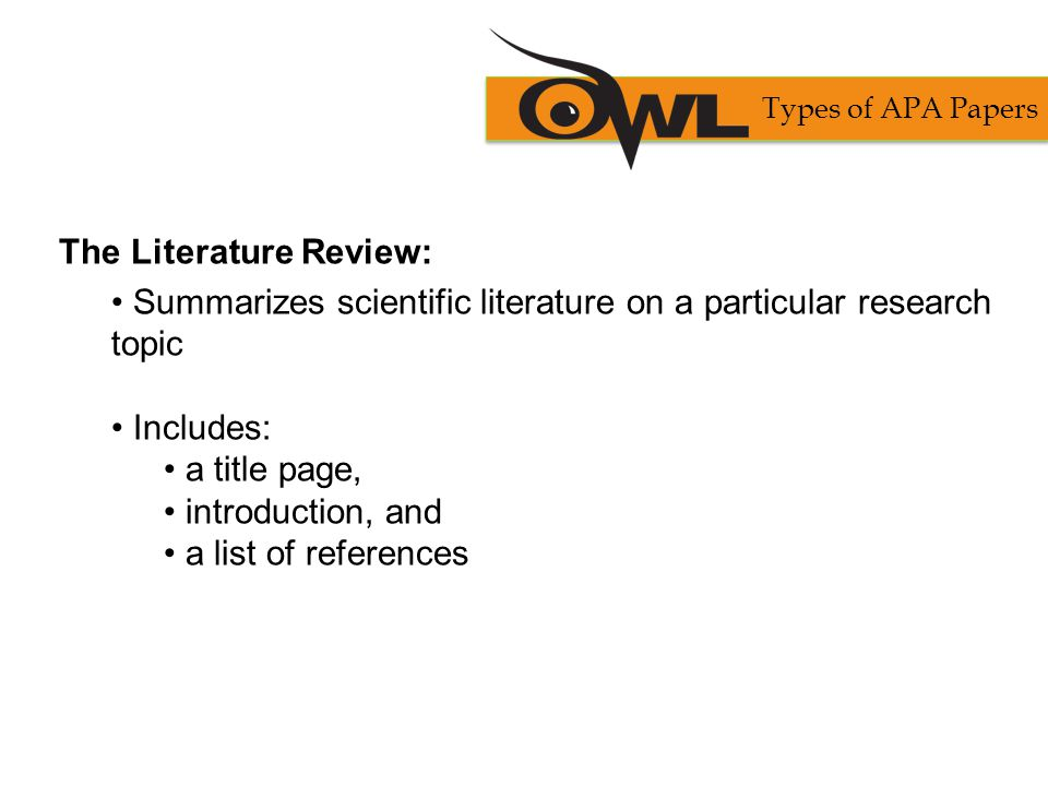 The Literature Review: