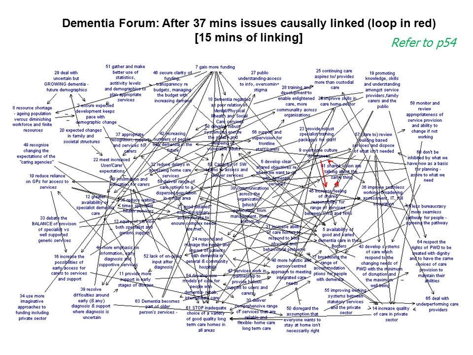 Dementia Forum: After 37 mins issues causally linked (loop in red)