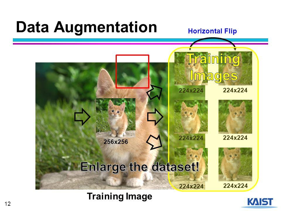 Data Augmentation Training Images Enlarge the dataset! Training Image