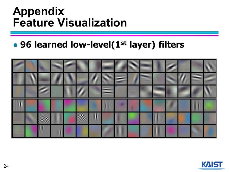 Appendix Feature Visualization