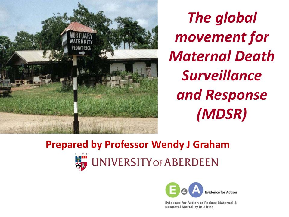 The global movement for Maternal Death Surveillance and Response