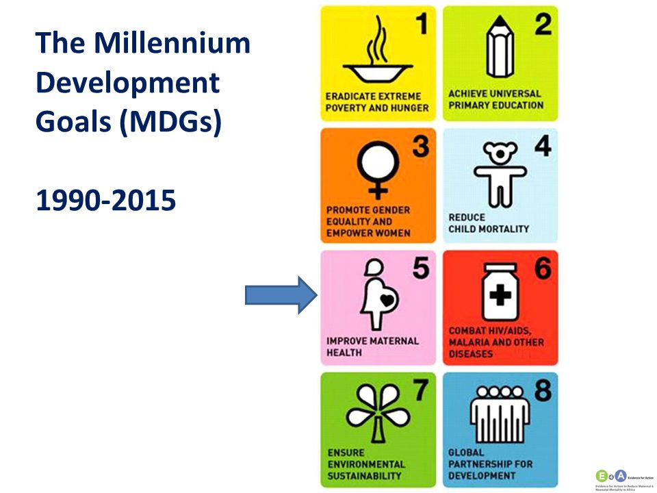 The Millennium Development Goals (MDGs)