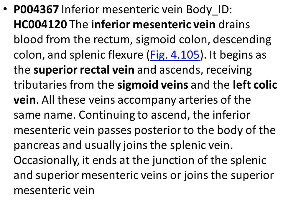 P004367 Inferior mesenteric vein Body_ID: HC004120 The inferior mesenteric vein drains blood from the rectum, sigmoid colon, descending colon, and splenic flexure (Fig.
