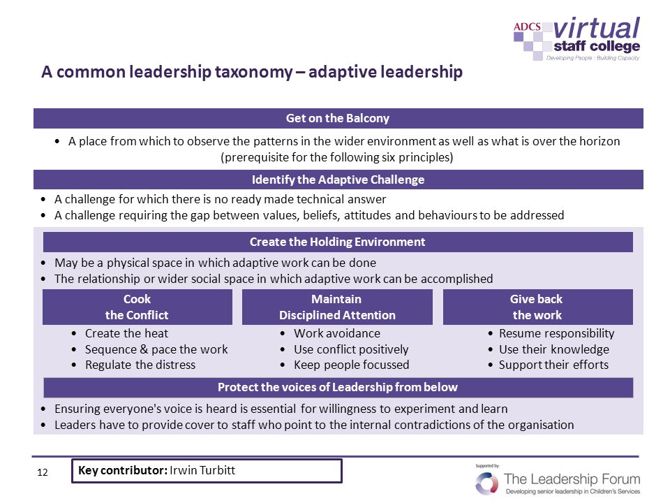 A common leadership taxonomy – adaptive leadership