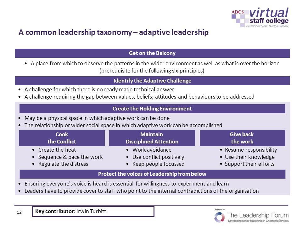 A common leadership taxonomy – adaptive leadership
