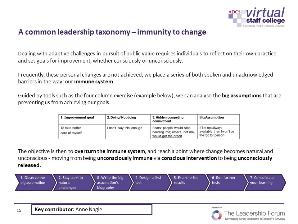 A common leadership taxonomy – immunity to change
