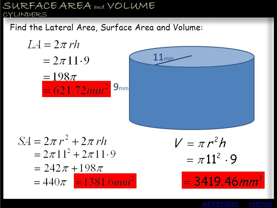 SURFACE AREA and VOLUME