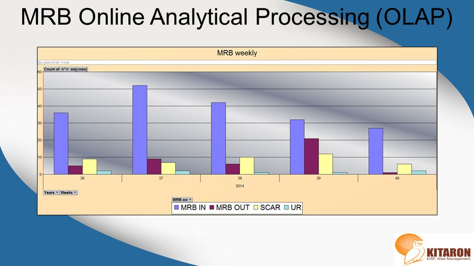 MRB Online Analytical Processing (OLAP)
