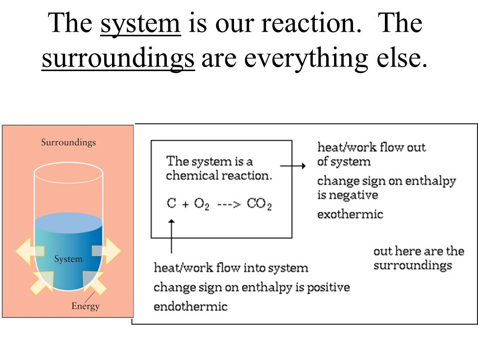 The system is our reaction. The surroundings are everything else.