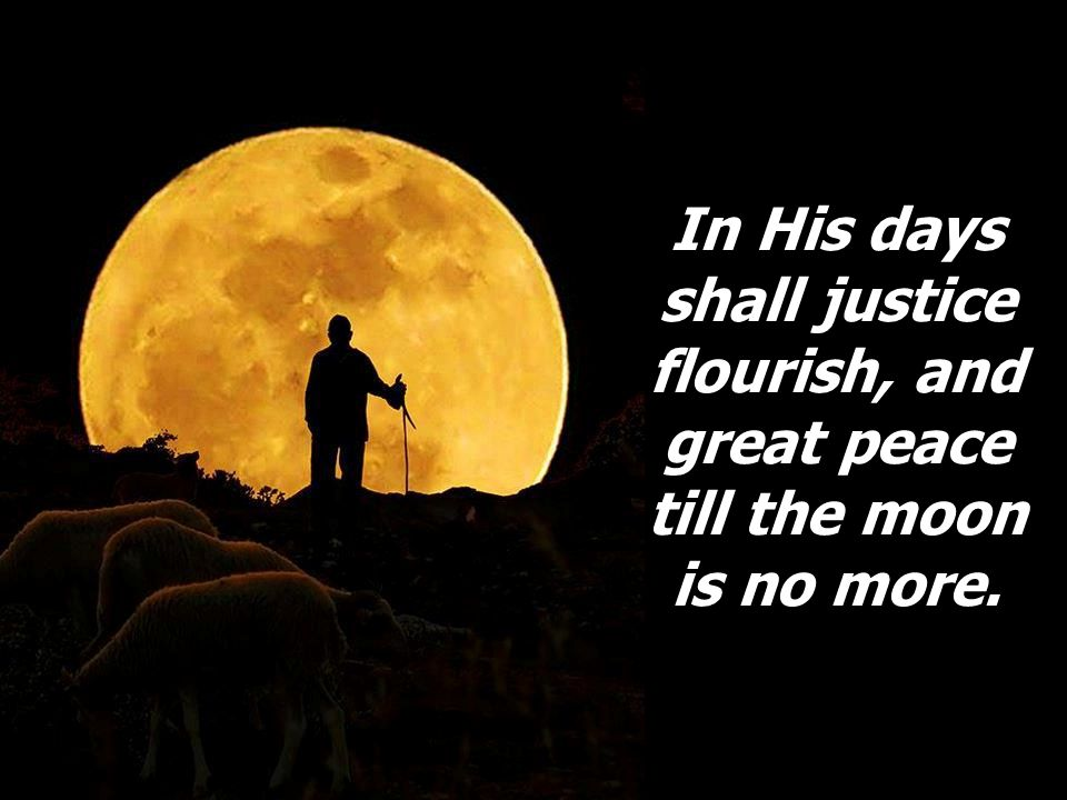 In His days shall justice flourish, and great peace till the moon is no more.