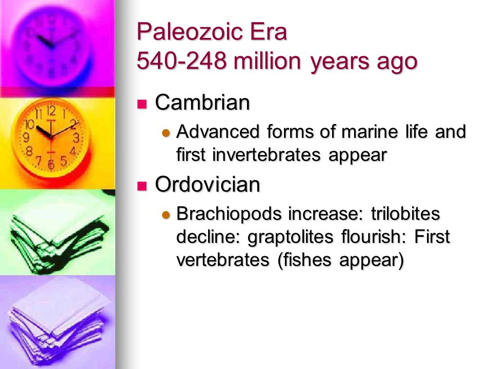 Paleozoic Era 540-248 million years ago