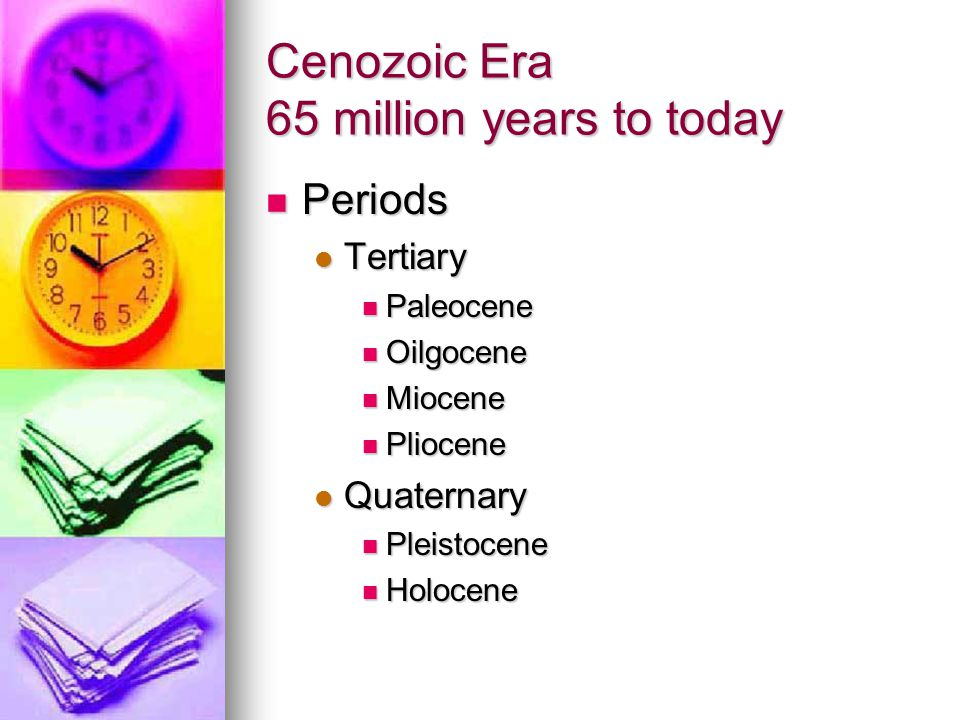 Cenozoic Era 65 million years to today