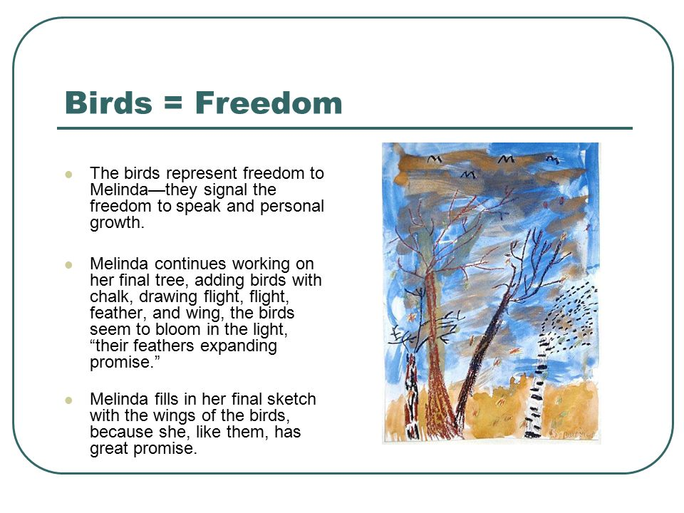 Birds = Freedom The birds represent freedom to Melinda—they signal the freedom to speak and personal growth.