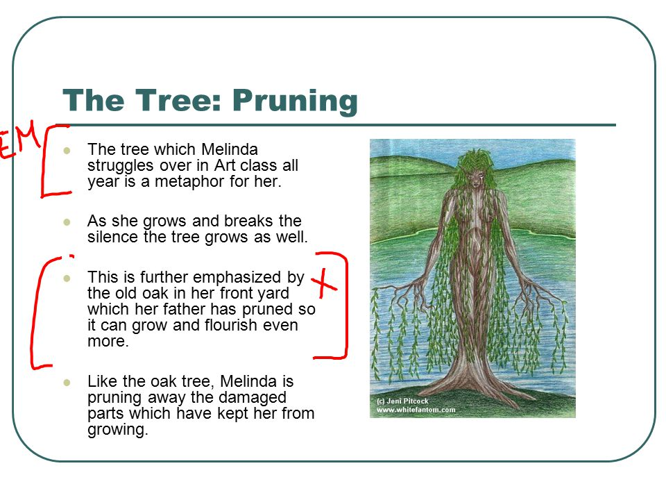The Tree: Pruning The tree which Melinda struggles over in Art class all year is a metaphor for her.