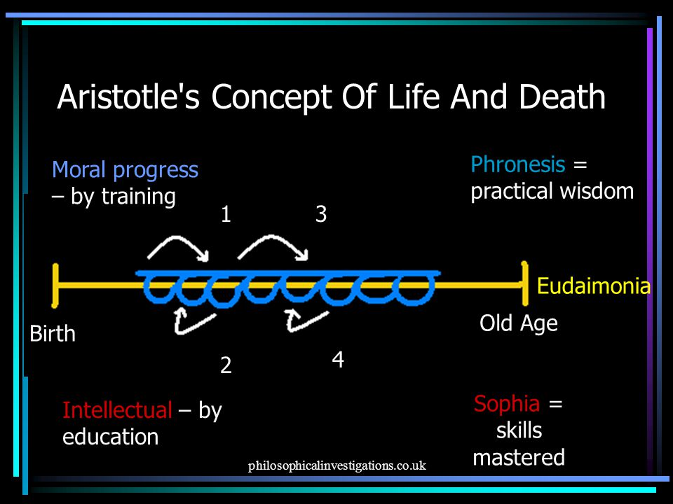 Aristotle s Concept Of Life And Death