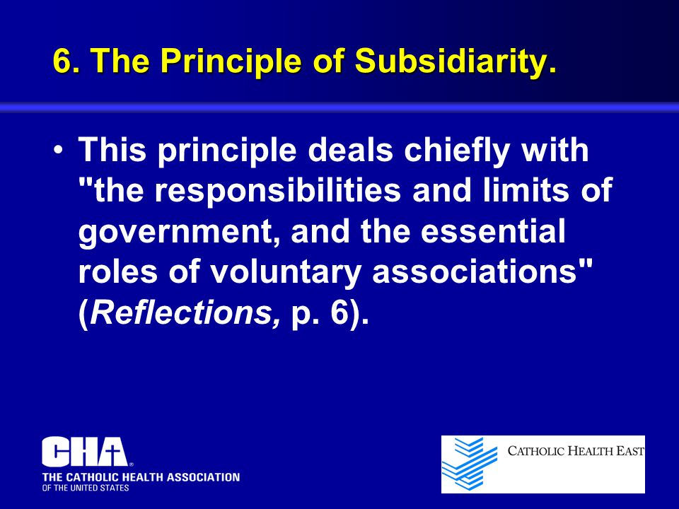 6. The Principle of Subsidiarity.