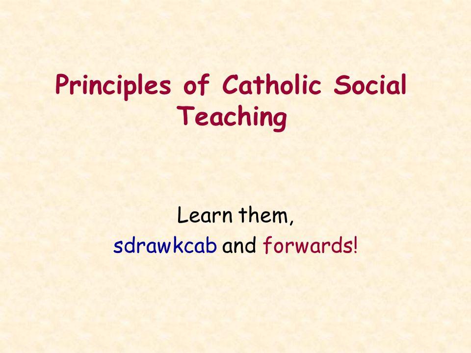 Principles of Catholic Social Teaching