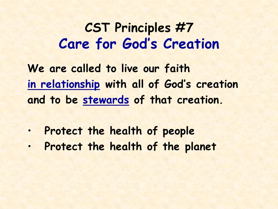 CST Principles #7 Care for God's Creation