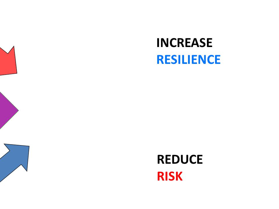 INCREASE RESILIENCE SUSTAINABLE DEVELOPMENT REDUCE RISK
