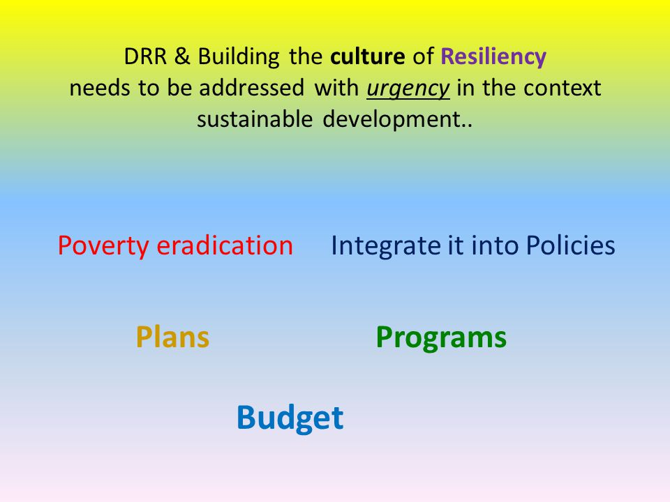 Budget Plans Programs Poverty eradication Integrate it into Policies