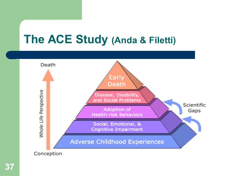 The ACE Study (Anda & Filetti)